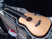 TAYLOR & CO Acoustic Guitar BT2